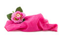 Silk rose on a scarf pink isolated white Stock Photo