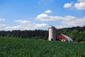 Silo in the middle of a wheet field Royalty Free Stock Photography