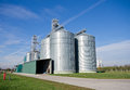 Silos big on large modern cow farm Stock Photo