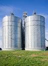 Silos big on large modern cow farm Royalty Free Stock Image