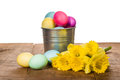 Silver container of dyed easter eggs with daffodil flowers Royalty Free Stock Images