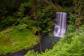 Silver creek falls Royalty Free Stock Photo