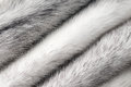 Silver cross mink fur texture macro Royalty Free Stock Photo