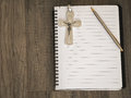 The silver crucifix and a pen on the a blank note book,christian Royalty Free Stock Photo