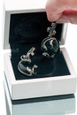 Silver earrings with black agate in a box Royalty Free Stock Photo