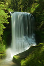 Silver Falls State Park, Middle North Falls Royalty Free Stock Photo