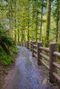 Silver Falls State Park Royalty Free Stock Photo