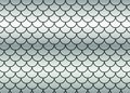 Silver fish scales. Royalty Free Stock Photo