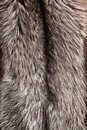 Silver fox fur background Royalty Free Stock Image