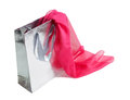 Silver gift bag and  pink silk scarf on white Royalty Free Stock Photo