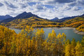 Silver jack reservior in fall color surrounded by aspen trees with san juan mountains the back ground near cimarron colorado Royalty Free Stock Image