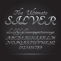 Silver platinum font and numbers eps vector editable for any background Royalty Free Stock Photos
