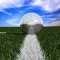 Silver soccer ball in the grass Royalty Free Stock Photo