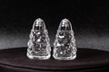 Silver tipped crystal salt and pepper shakers Royalty Free Stock Photo
