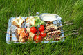 Silver tray with different food for picnic Royalty Free Stock Images