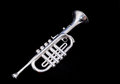 Silver Vintage Toy Trumpet Royalty Free Stock Photo
