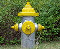 Silver and Yellow Fire Hydrant Stock Photo