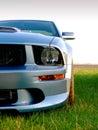 Silvergrey American Sportscar Royalty Free Stock Photography
