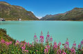 Silvretta Stausee Royalty Free Stock Photos