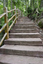 Simian mountain stairs eastphoto tukuchina Royalty Free Stock Photos