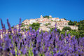 Simiane la Rotonde village with lavender field in Provence, France Royalty Free Stock Photo
