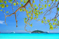 Similan islands paradise bay thailand Stock Image