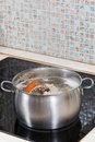 Simmering chicken broth on cooker with seasoning vegetables in steel pot glass ceramic Stock Image