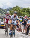 Simon geschke climbing alpe d huez france july the basque cyclist from argos shimano team the difficult road to during Royalty Free Stock Images