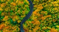 Simple aerial view of road in fall colored woods Royalty Free Stock Photo
