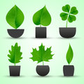 Simple nature leaf of tree in pot colorful icons eps Stock Photo