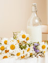 Simply stylish wooden kitchen with bottle of milk and glass on table, summer flowers camomile, healthy foog moring Royalty Free Stock Photo