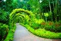 Singapore Botanic Gardens Royalty Free Stock Photo