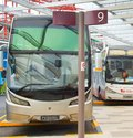 Bus parking at airport. Singapore Royalty Free Stock Photo
