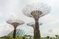 Singapore s gardens by the bay is a tropical park with towering tree like constructions in Stock Image