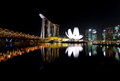 Singapore skyline beautiful at nigh Stock Images