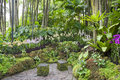 Singapure botanic garden
