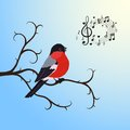 Singing bullfinch bird on a tree branch vector illustration Stock Image