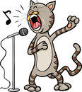 Singing cat cartoon illustration of funny character Royalty Free Stock Photos