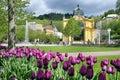 Singing fountain, spa Marianske lazne, Czech republic Royalty Free Stock Photo