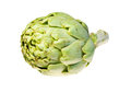 Single artichoke isolated on white Stock Photos