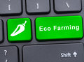 Single button with eco farming text Royalty Free Stock Photo