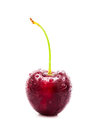 Single cherry on white background Stock Photo