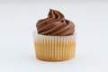 A Single Chocolate Cupcake. Royalty Free Stock Photo