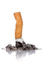 Single cigarette with ash Royalty Free Stock Photo