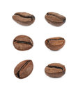 Single coffee bean isolated Royalty Free Stock Photo