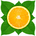 Single cross section of orange with green leaf Royalty Free Stock Photo