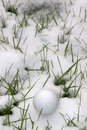 Single dimpled golf ball in the snow covered grass a lone ireland at winter Royalty Free Stock Photography