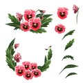 Single flowers, leaves, garland and a bouquet of red pansies isolated on a white background.
