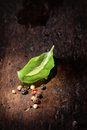 Single fresh leaf basil scattered peppercorns highlighted wooden surface copy space Royalty Free Stock Images