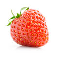 Single fresh red strawberry isolated on white Royalty Free Stock Photo